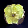Sliced prehnite fragment