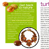 Autumn Splendor Necklace in Beadwork Magazine of April-May 2008