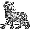 More Info: Zodiac Sign - Aries (Ram)
